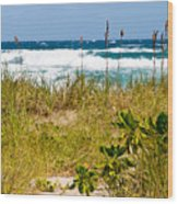Its A Shore Bet Wood Print by Michelle Wiarda
