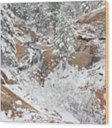 It's Mid May. We're Fast Approaching The End Of Our Snow Season.  Wood Print