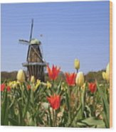Its Tulip Time Wood Print