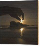 I've Just Caught The Sun Wood Print