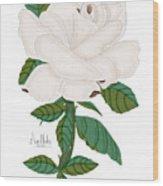 Ivory Rose Wood Print