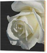 Ivory Rose Flower On Black Wood Print