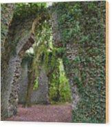 Ivy Clad Ruin Wood Print