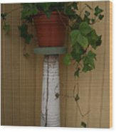 Ivy Corner Wood Print