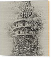 Ivy Covered Castle In The Woods Wood Print