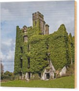 Ivy Covered Ruined Castle Ireland Wood Print