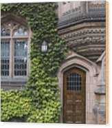 Ivy League Princeton Wood Print