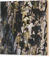 Ivy Leaves Grunge Tone Wood Print