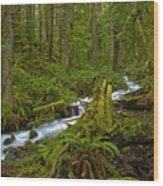 Lifeblood Of The Rainforest Wood Print