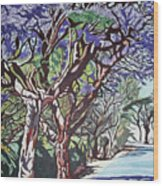 Jacaranda Road Wood Print
