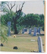 Jack Rabbit In Cementery Wood Print