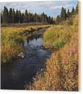 Jackfish Creek In Autumn Wood Print