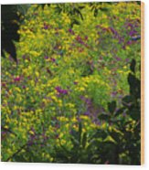 Jackson County Wildflowers Wood Print