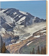 Jackson Glacier - Glacier National Park Mt Wood Print