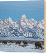 Jackson Hole The Grand Tetons Wood Print
