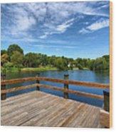 Jackson Pond Wood Print