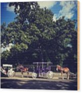Jackson Square Carriages Wood Print