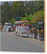 Jackson Square Horse And Buggies Wood Print