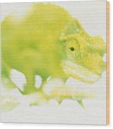 Jacksons Chameleon Color Wood Print
