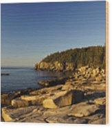 Jagged Coast Of Maine Wood Print