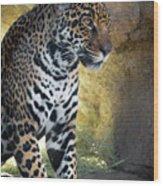 Jaguar At Rest Wood Print