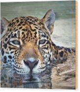 Jaguar Cooldown Wood Print