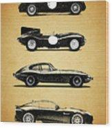 Evolution Of The Cat Wood Print