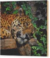 Jaguar Relaxing Wood Print