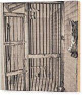 Jail House Interior Wood Print