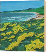 Jalama Beach Wood Print