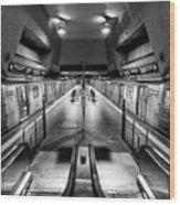 Jamaica Center Subway Station, Queens New York Wood Print
