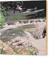Jamaica Rushing Water Wood Print