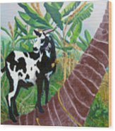 Jamaican Goat In A Tree Wood Print