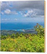 Jamaican Vista Wood Print