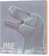Jane Is A Fossil Specimen Of Small Wood Print