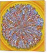 Janet -- Floral Disk Wood Print