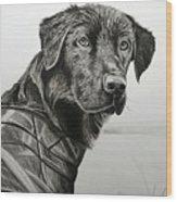 Jango Wood Print