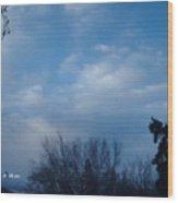 January 04 2005 1046am Wood Print