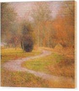 January 14 2010 Wood Print
