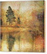 January 26 2010 Wood Print
