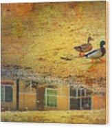 January 30 2010 Wood Print