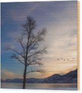 January 6  2010 Wood Print