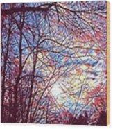 January Beauty 1 Wood Print