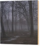 January Fog 2 Wood Print