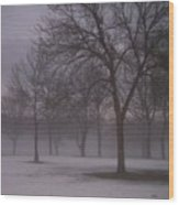January Fog 4 Wood Print