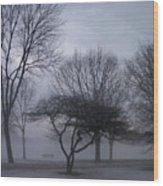 January Fog 6 Wood Print