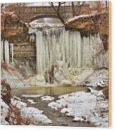 January Melt at Wequiock Falls  Wood Print