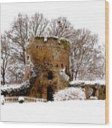 January Snow In England  Wood Print