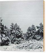 January Snow Iv Wood Print