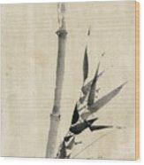 Japan: Bamboo, C1830-1850 Wood Print